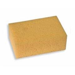 Professional Sponge 160x110x62mm